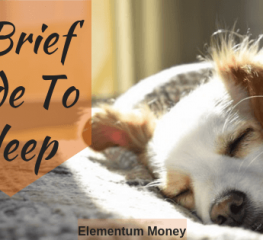 A Brief Guide To Sleep